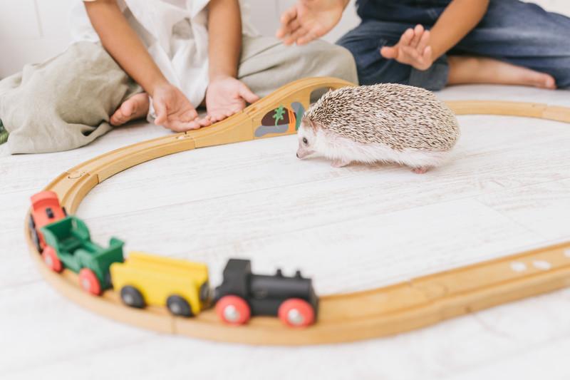 【革命】子供部屋のお片付け方法はこれ一択!! プレイマット兼おもちゃ収納袋!!